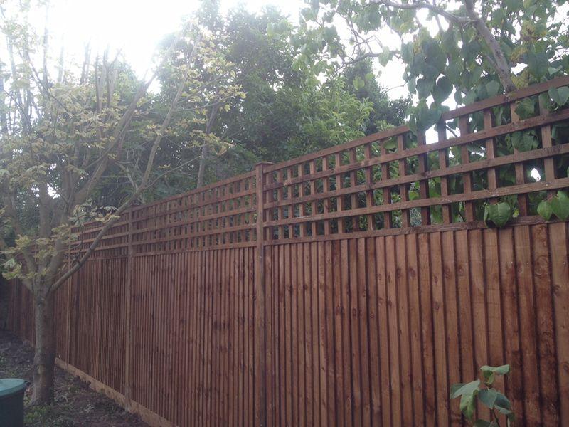 trellis fencing contractors